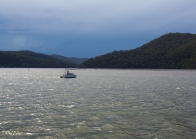 prawns-and-oysters Hawkesbury River
